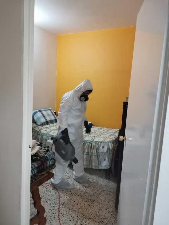 hogar-sanitizado2